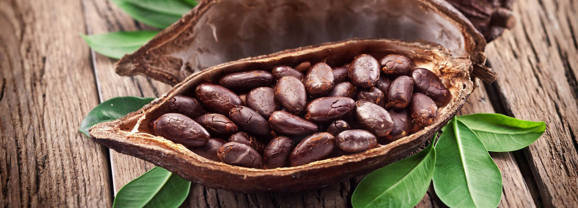Kakaobohnen aus fairem Anbau